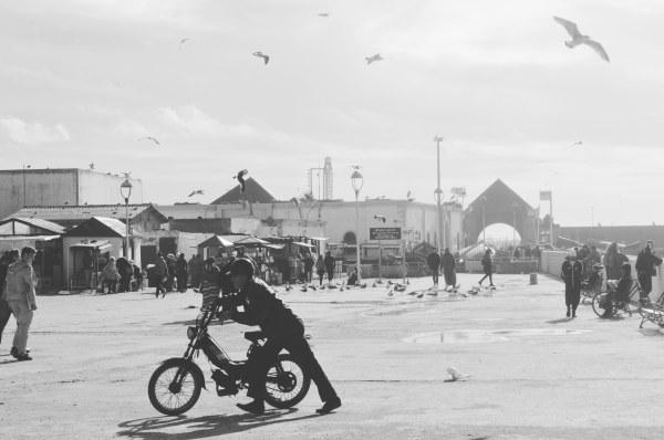 Essaouira (103).jpg