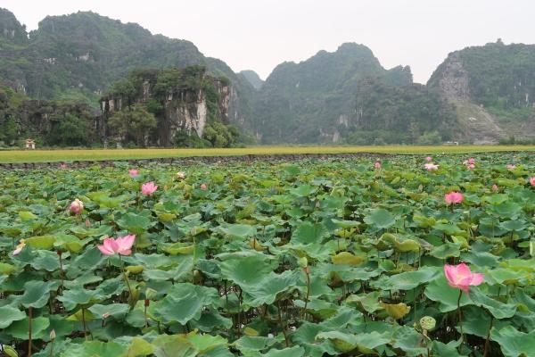 Ninh Binh (53)